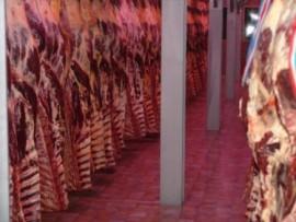 Замораживание мяса в камере шоковой заморозки